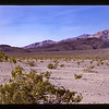 Death Valley National Park (Panamint Valley)