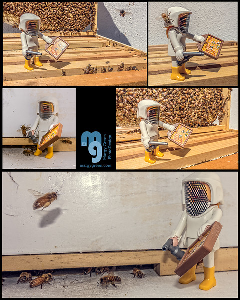 playmobil beekeeper collage logo