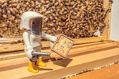 Playmobil beekeeper and hive. Tucson Arizona