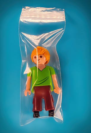 Instead of Elf on the Shelf try Shaggy in a Baggy