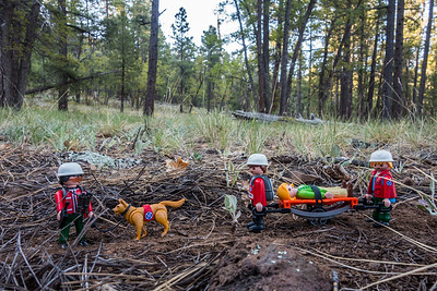 Playmobil forest rescue, camp on FR124 just SE of Mormon Lake, Arizona
