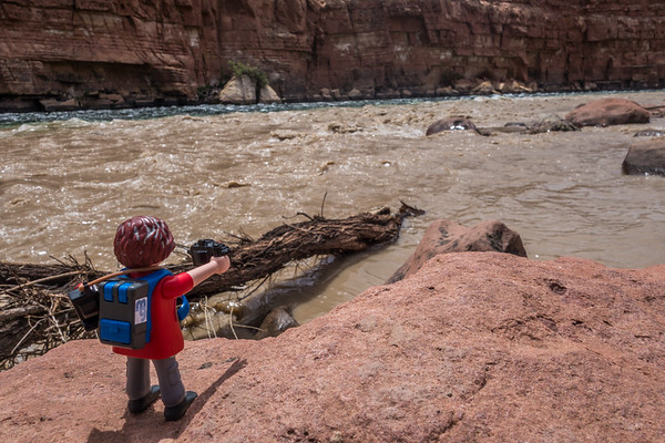 Playmobil photographer, mixing of the Paria River into the Colorado River, Lee's Ferry, Marble Canyon, Colorado River, Arizona