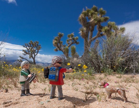 Playmobil Explorers, El Paso Mountain Wilderness, Kern Co.  California USA