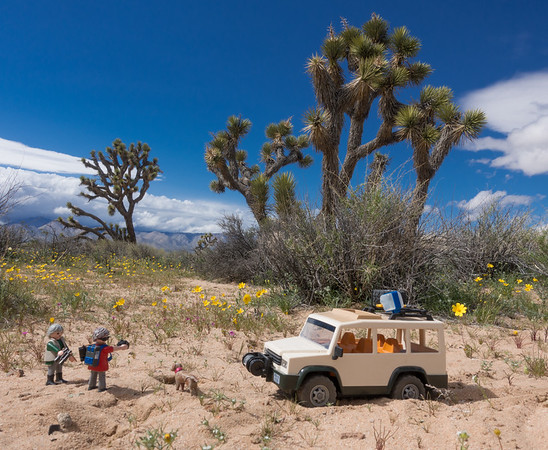 Playmobil Explorers, El Paso Mountain Wilderness, Kern Co.  California USA