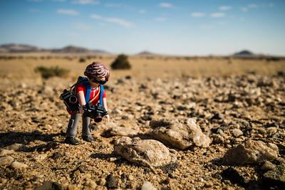 stone grasshopper. Kahn Valley, Erongo Namibia