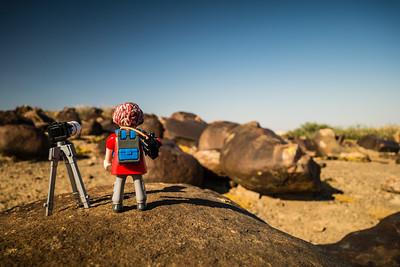 elephant rubbing stones. Kahn Valley, Erongo Namibia