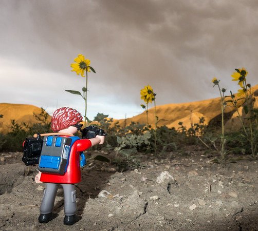 Playmobil photographer, Just East of Capital Reef National Park, Utah