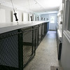 Pleasant Kennels in Leominster held a ribbon cutting on Thursday, July 25, 2019. A view of some of the pens at the new kennels. SENTINEL & ENTERPRISE/JOHN LOVE