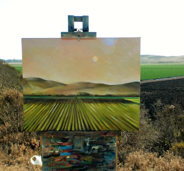 Artichoke Fields