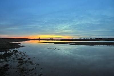 Wiosenne rozlewiska Baryczy ©Paweł Pawlak - Fotografia przyrodnicza i krajobrazowa