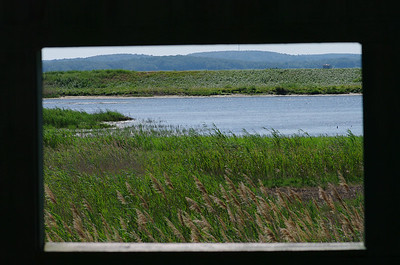 Framed view of the Marsh - Blind