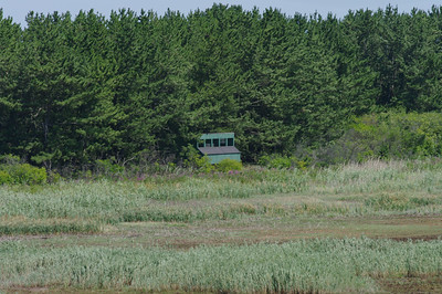 Bird Blind on Plum Island