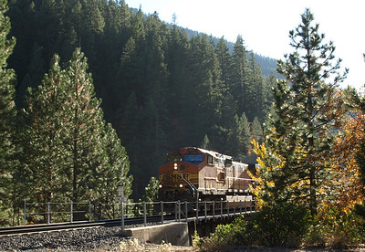 Plumas County Fall Foliage Gallery