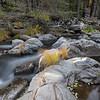 Silky Waters of Lights Creek