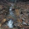 Small stream that feeds Lights Creek along Fruit Growers Boulevard during a winter rain.