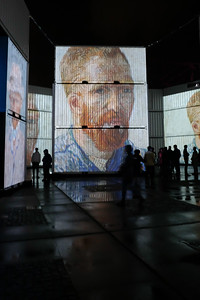 181 Van Gogh in the rain