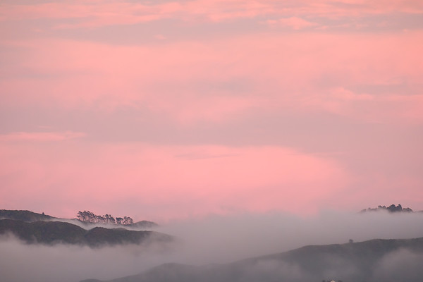 050 Aotearoa plus some pink cloud