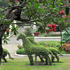 Saigon Botanic Gardens