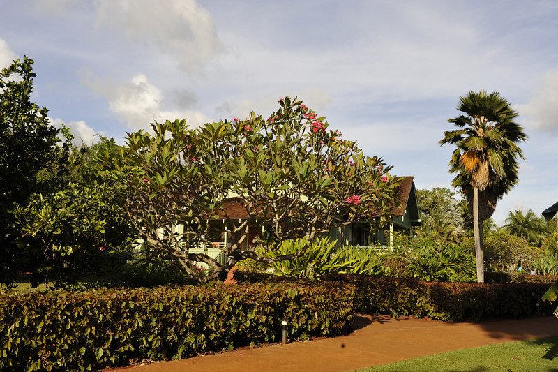National Tropical Botanic Gardens. Bill and Jean Lane Visitor Centre.<br /> Located on the island's south shore in the town of Po`ipū, near the southeast rim of the Lāwa`i Valley<br /> Kauai, Hawaii.