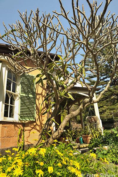 Bronte House, Sydney, Australia.