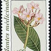 Plumeria rubra<br /> 1990<br /> United Nations<br /> U.N. officials want to make certain the honored plants are good ones. So they have opted for medicinal plants, ones that produce chemicals that can be used to treat illnesses.