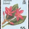 Plumeria rubra<br /> 1987<br /> Solomon Islands<br /> Frangipani