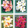 New Year Flower 2008 Postage stamps<br /> <br /> Thailand<br /> SIAMSTAMP