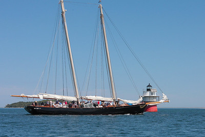 America Under Sail-19