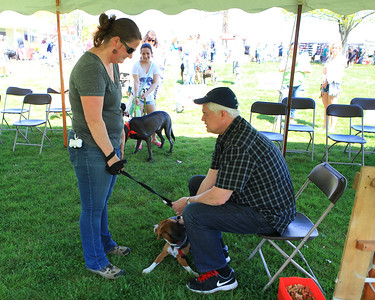 Bark in the Park-20