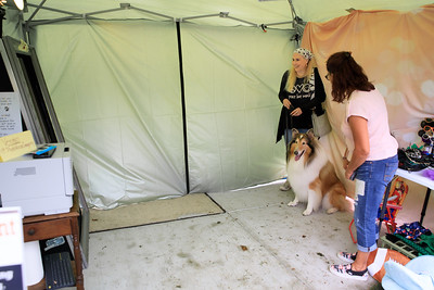 Maria Pauline, owner of Photo Mirror Imagery Entertainment, poses Melissa Lesogor of Carver and her collie Nova for a portrait photo.