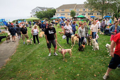 Despite threatening rain, Nelson St Park was was packed  a large, eclectic mix dogs with their owners attached for the annual Plymouth Area Chamber of Commerce Bark in the Park event on Saturday 9/18.