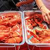 Lobsters Arrive-44