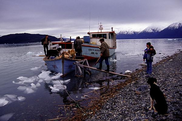 Para ir a Caleta Tortel desde el campo la familia Landeros tiene que viajar un día en lancha. En los inviernos antiguos estas aguas se congelaban por meses. Ventisquero Jorge Montt 2005