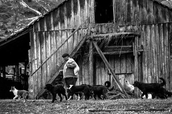 De paseo con sus perro. Guillermo Maldonado (Q.E.P.D.). Río Ñadis 2005