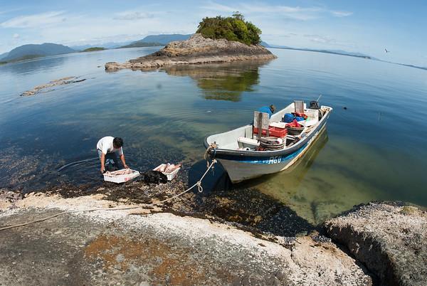 En una pequeña isla en la mitad del Canal de Moraleda, Carlos deja la pesca del día para poder ir por más al día siguiente antes de ir a venderlos al pueblo.