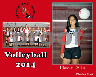 2014-15Varsity_Volleyball