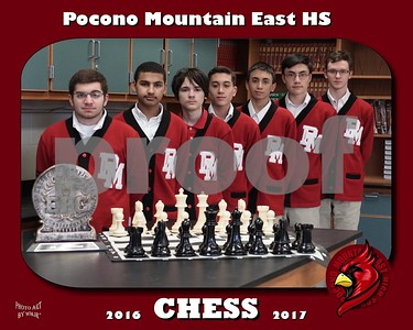 Pocono Mountain East Chess Team