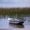 AM 307 - Bolivia, Lake Tititcaca