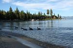 Meeks Bay Picnic Lake Tahoe