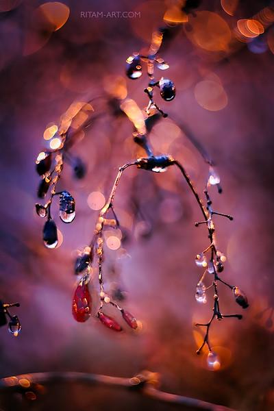 Пасхальные драгоценности / Easter Jewellery