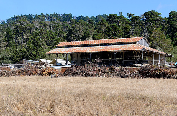 Point Lobos Ranch - 091218