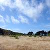 Point Lobos Ranch Property