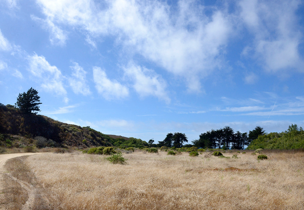 . The Point Lobos Ranch property on Wednesday, September 12, 2018.  (Vern Fisher - Monterey Herald)