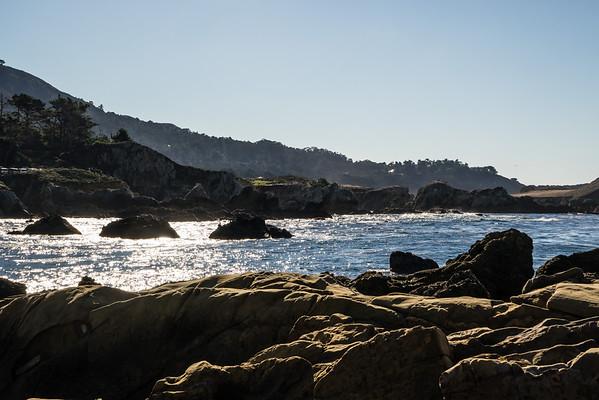 Point Lobos State Park 12-30-14
