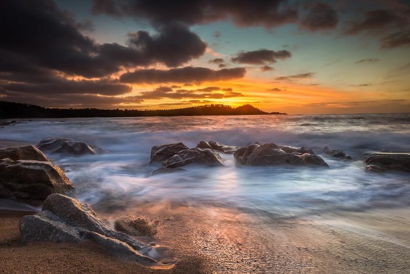 Point Lobos Silhouette