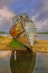 """Outcast of the Sea,"" Point Reyes Shipwreck, Tomales Bay, Point Reyes National Seashore, Inverness, California"