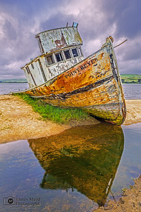 """Grounded,"" Point Reyes Shipwreck, Tomales Bay, Point Reyes National Seashore, Inverness, California"