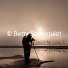 Photographing Shorebirds