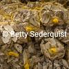 Bundles of Oyster Shells