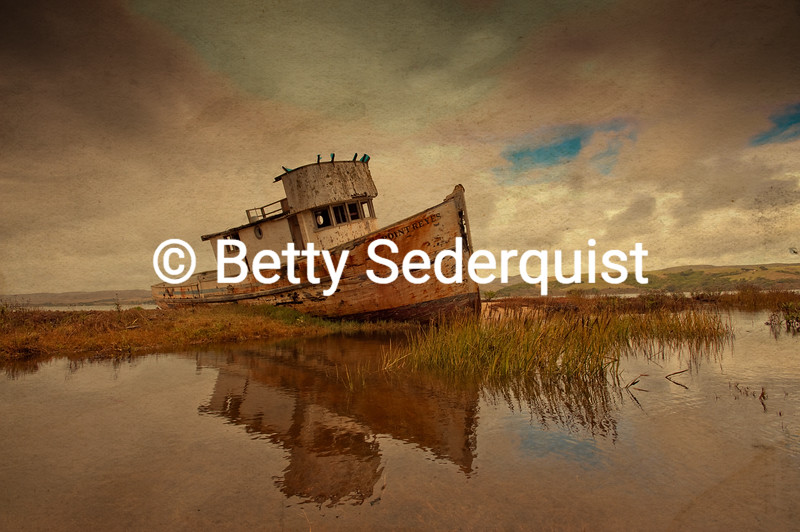 Derelict Boat in Inverness